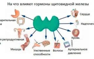 Гипертензия щитовидной железы что это
