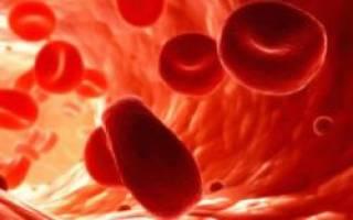 Вязкость крови что это такое