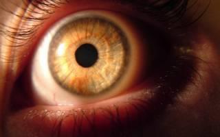 Гипертония и офтальмолог