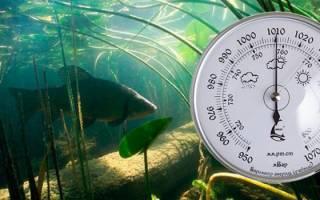 Влияет ли высокое давление на клев рыбы