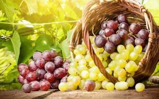 Виноград повышает или понижает артериальное давление