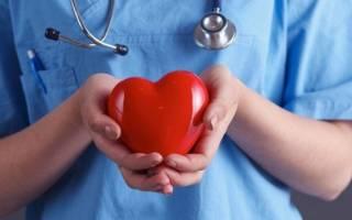 Значение здорового образа жизни для профилактики сердечно сосудистых заболеваний