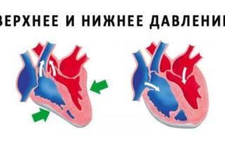 Артериальное давление у ребенка 10 лет норма таблица