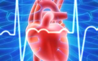 Для хронической правожелудочковой сердечной недостаточности характерны