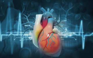 Ведение беременности при пороках сердца