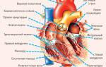 Боли в сердце упадок сил