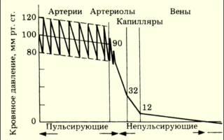 Давление в аорте в момент сокращения