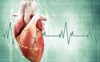 Как выглядит настоящее сердце