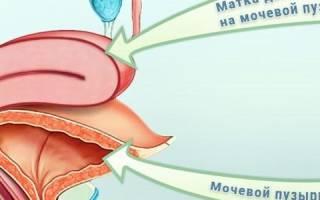 Давление мочевого пузыря на матку