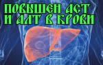 Анализ алт и аст выше нормы причины