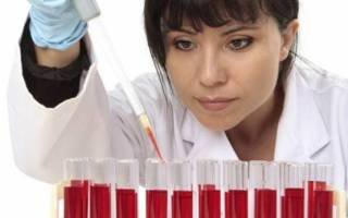 Индекс анизоцитоза эритроцитов rdw cv понижен